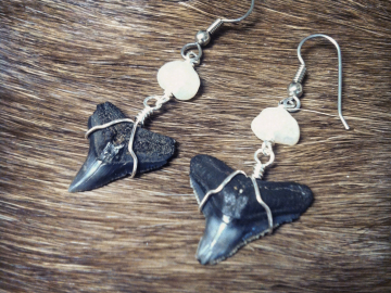 Shark teeth and freshwater pearl earrings